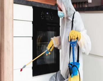 Pest Control Dubai